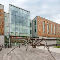 Merit Award: Black Family Visual Arts Center, Dartmouth College | Machado Silvetti Associates