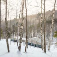MERIT AWARD - RESIDENTIAL: Woodshed | Birdseye Design