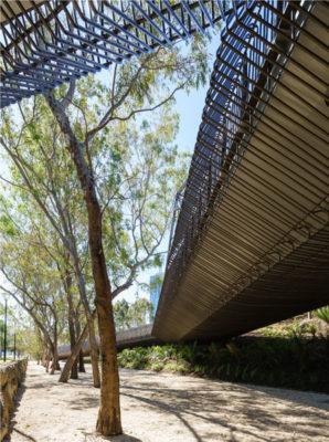 HONOR AWARD | 2018 AIANE Design Awards | Tanderrum Pedistrian Bridge